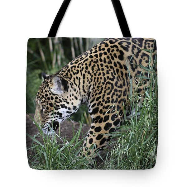 Tote Bag featuring the photograph Jag by Gary Bridger