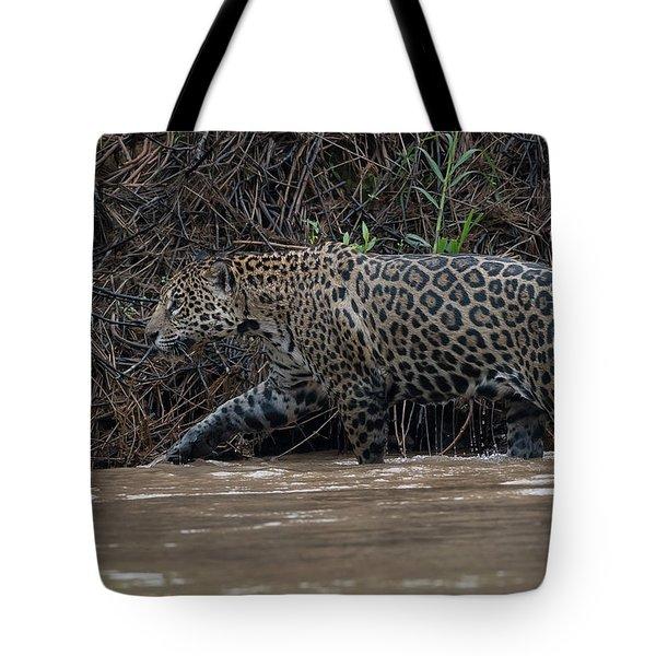 Jaguar In River Tote Bag