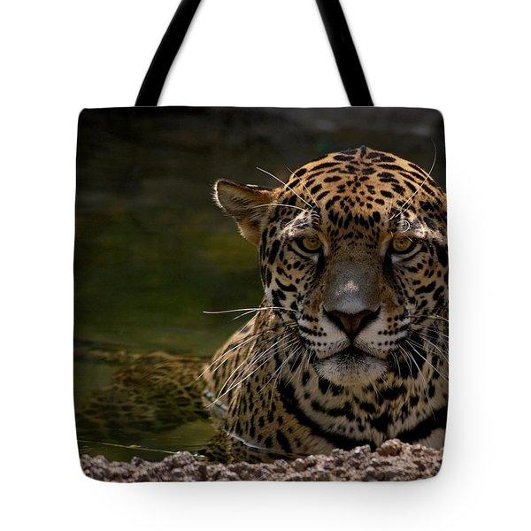 Jaguar In The Water Tote Bag by Sandy Keeton