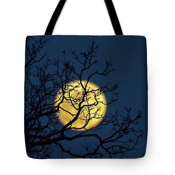 Janet's Moon Tote Bag