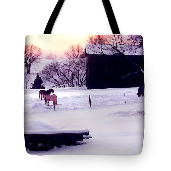 January At Jackson's Tote Bag