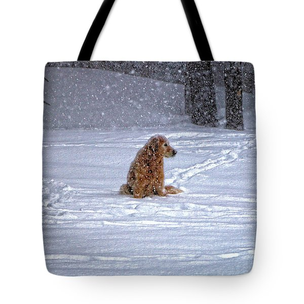 January Blizzard Tote Bag