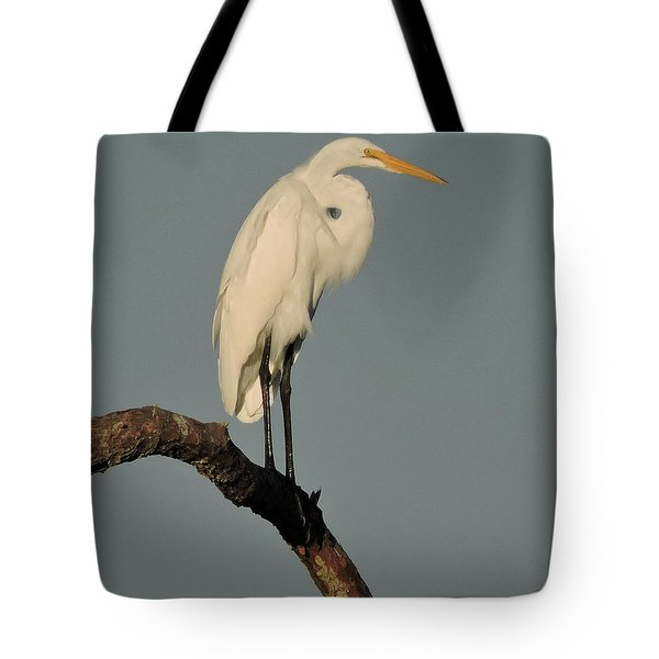 Tote Bag featuring the photograph January Egret by Peg Toliver