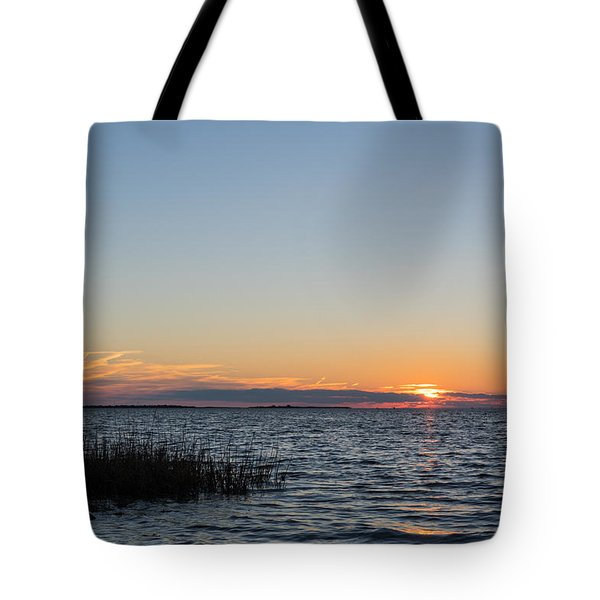 January Sunset Tote Bag by Gregg Southard