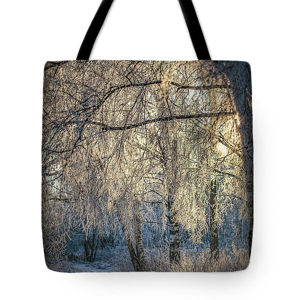 January,1-st, 14.35 #h4 Tote Bag