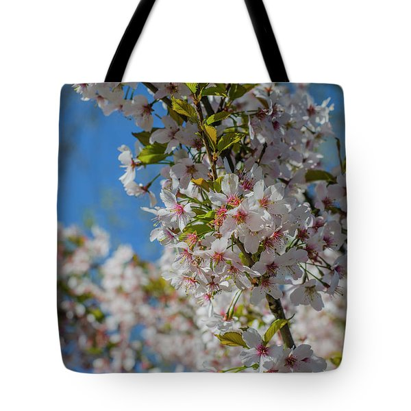 Japanese Cherry  Blossom Tote Bag by Daniel Precht