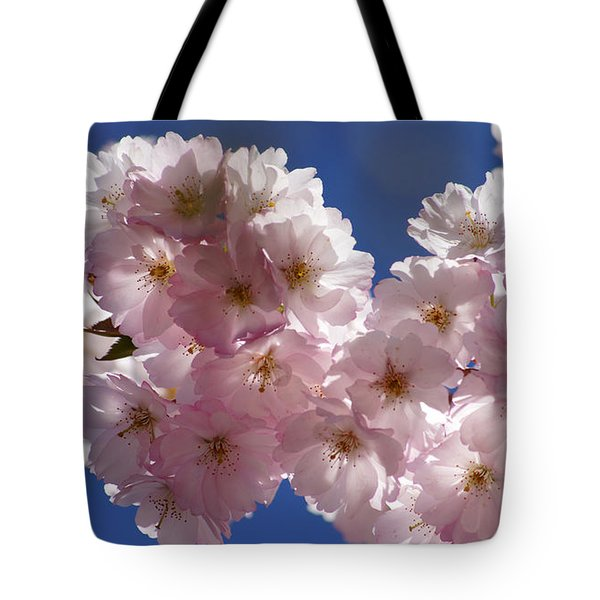 Japanese Flowering Cherry Prunus Serrulata Tote Bag