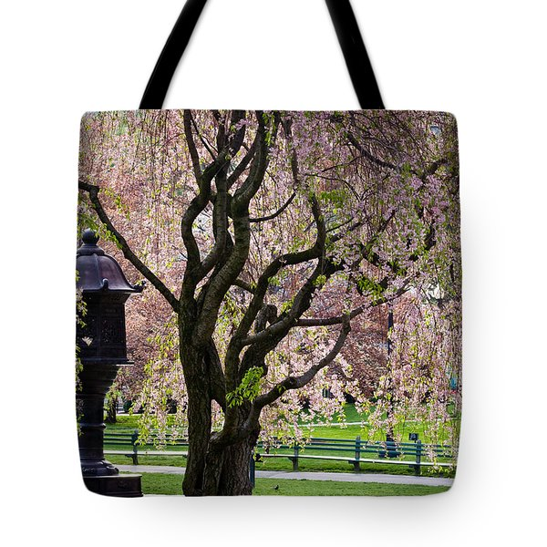 Japanese Lantern Tote Bag by Susan Cole Kelly