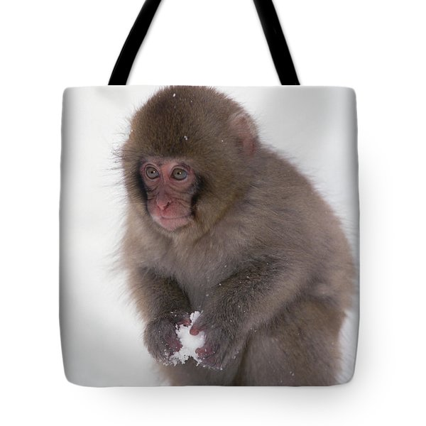 Tote Bag featuring the photograph Japanese Macaque Macaca Fuscata Baby by Konrad Wothe
