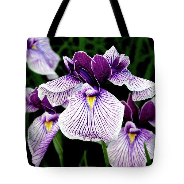 Japanese Water Iris In Purple 2714 H_2 Tote Bag