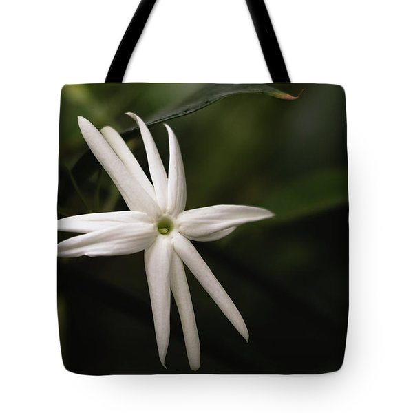 Tote Bag featuring the photograph Jasmine Flower by Cristina Stefan