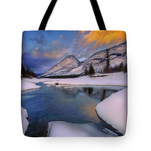 Tote Bag featuring the photograph Jasper In The Winter by Dan Jurak