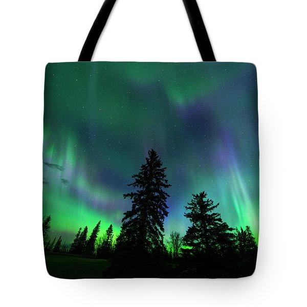 Tote Bag featuring the photograph Jasper National Park Aurora by Dan Jurak