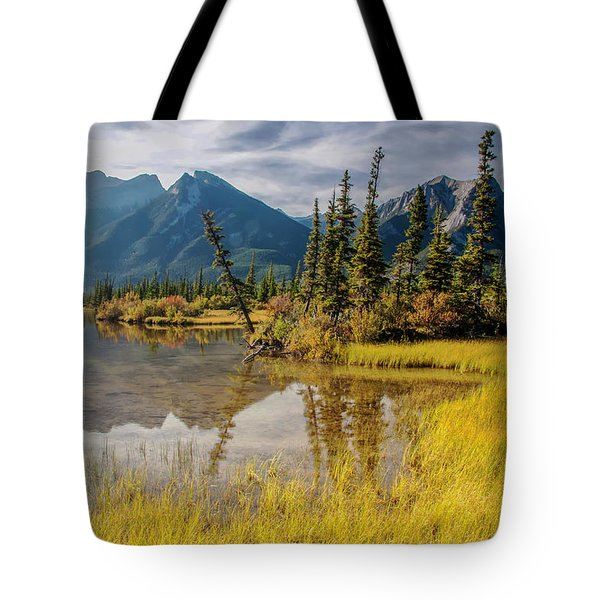 Jasper Wetlands 2009 02 Tote Bag