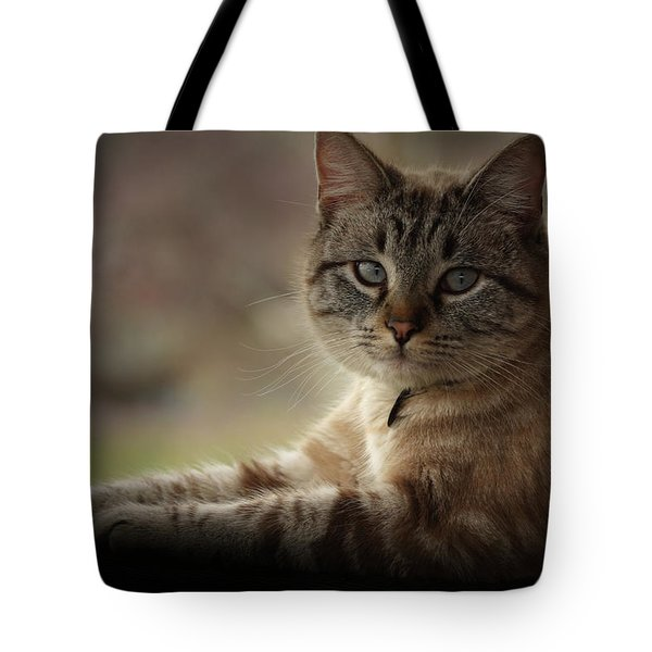 Tote Bag featuring the photograph Jaspurr by Kim Henderson
