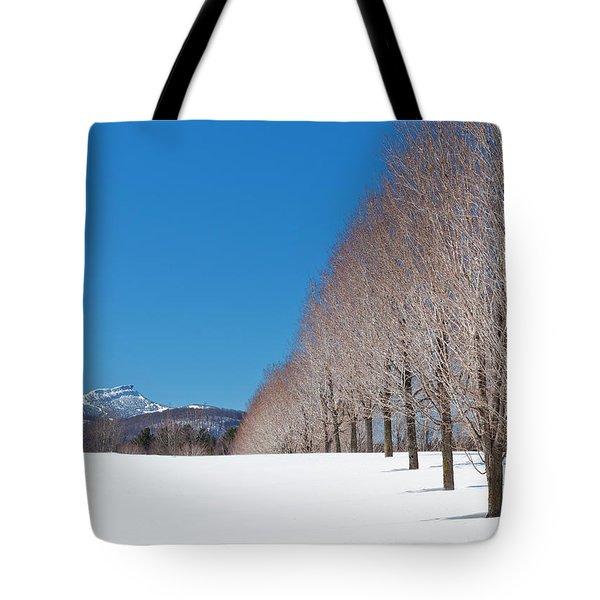 Jay Peak Winter Landscape Tote Bag