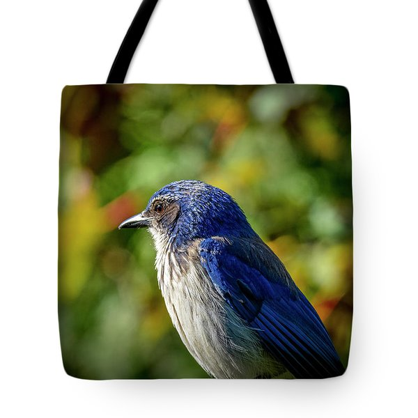 Jay Watch Tote Bag