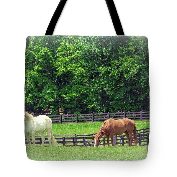 Jefferson Landing Series No. 5 Tote Bag