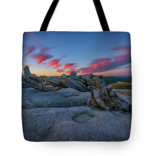Tote Bag featuring the photograph Jeffrey Pine Dawn by Rick Berk