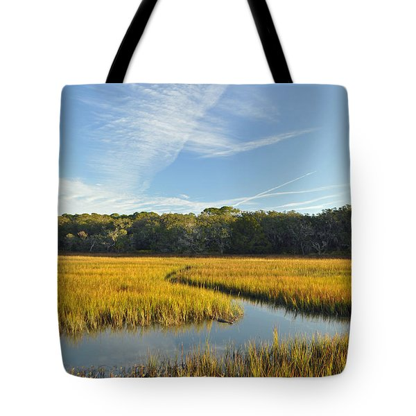 Jekyll Island Marsh High Tide And Sky Tote Bag by Bruce Gourley