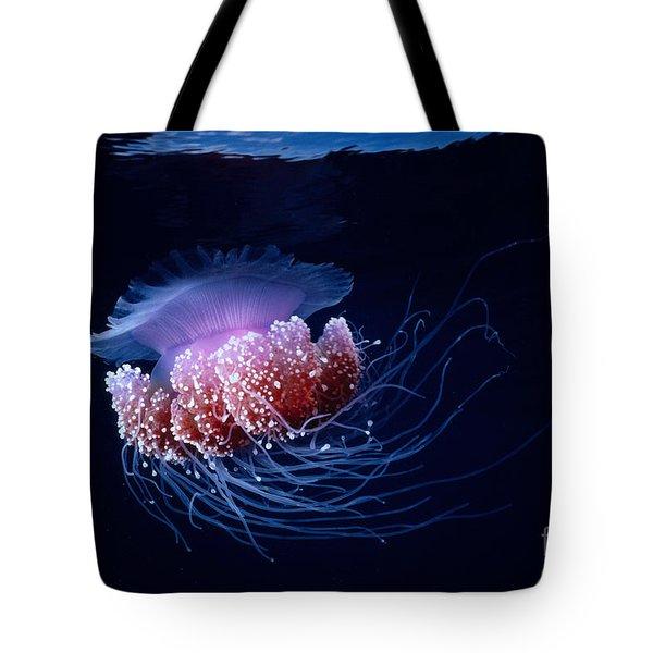 Jellyfish Tote Bag by Steve Rosenberg - Printscapes