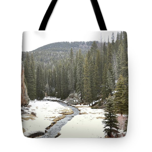 Tote Bag featuring the photograph Jemez Mountains Forest Stream by Andrea Hazel Ihlefeld