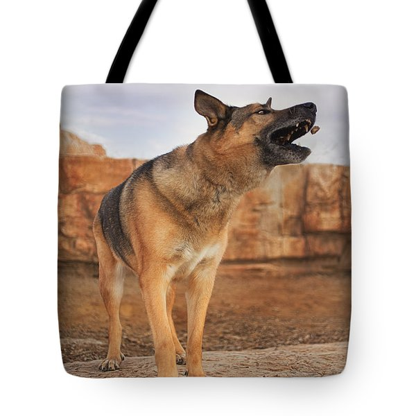 Jerry Lee  Tote Bag