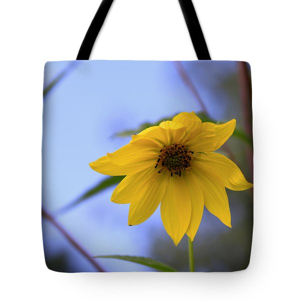 Jerusalem Artichoke And Blue Sky Tote Bag by Larry Capra