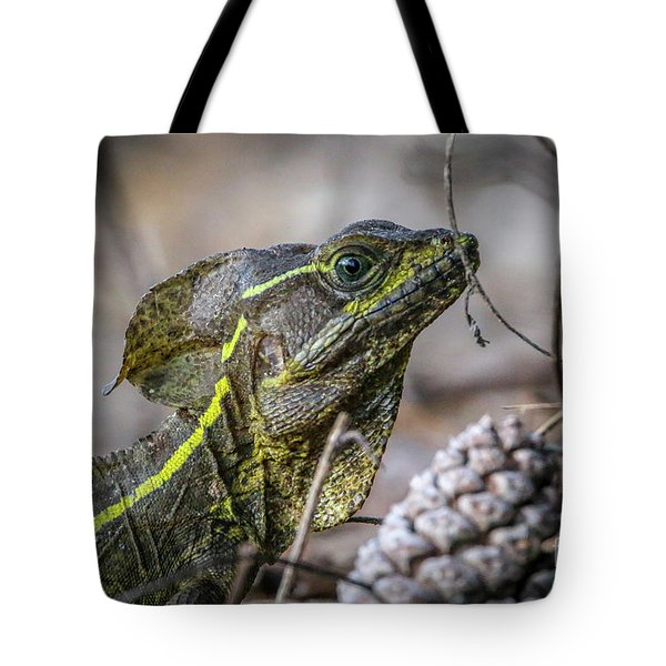 Tote Bag featuring the photograph Jesus Lizard #2 by Tom Claud