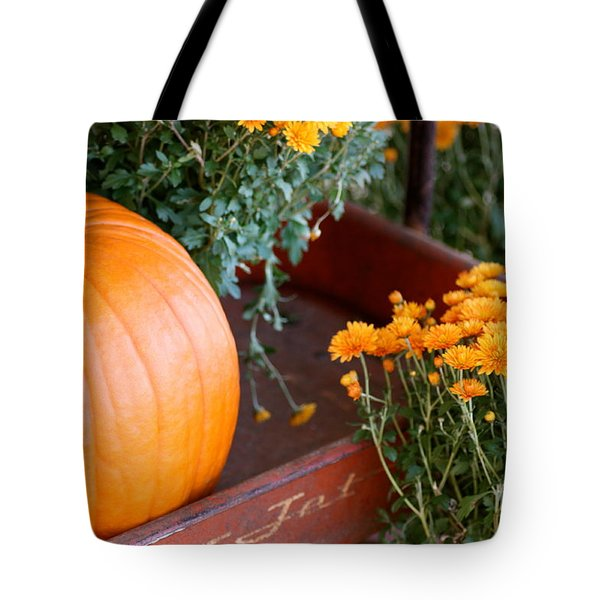 Jet Pumpkin Tote Bag by Cathy Dee Janes