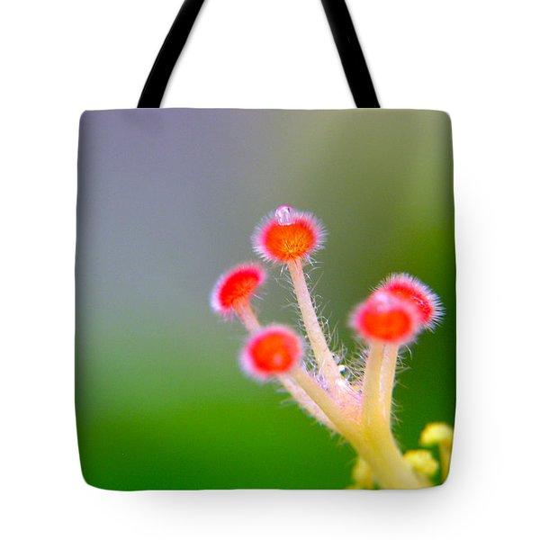 Jewel Of The Crown Tote Bag