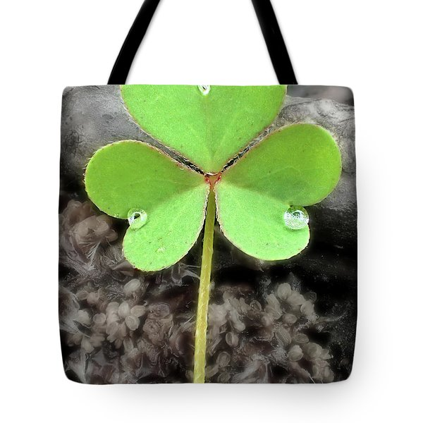 Jeweled Clover 3 Tote Bag by Lorella Schoales