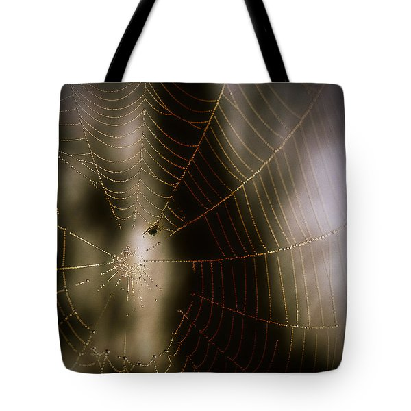 Jeweled Weaver Tote Bag