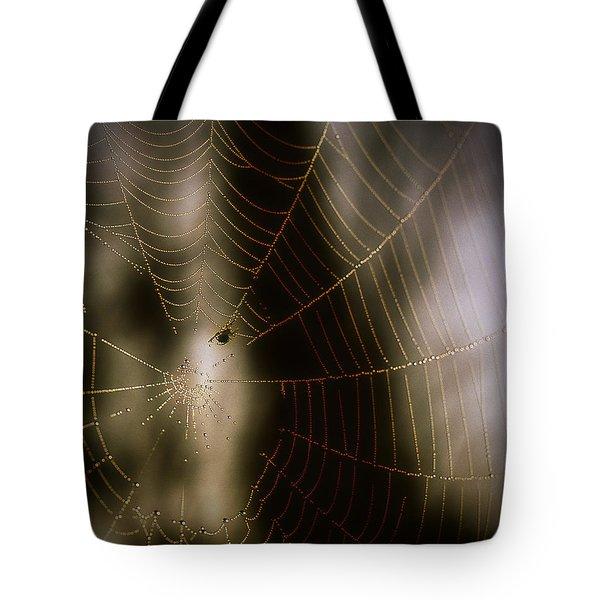 Jeweled Weaver Tote Bag