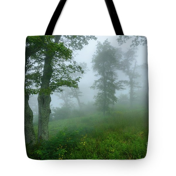 Jewell Hollow Overlook Tote Bag