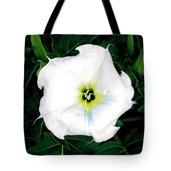 Tote Bag featuring the photograph Jimson Weed #1 by Lou Novick