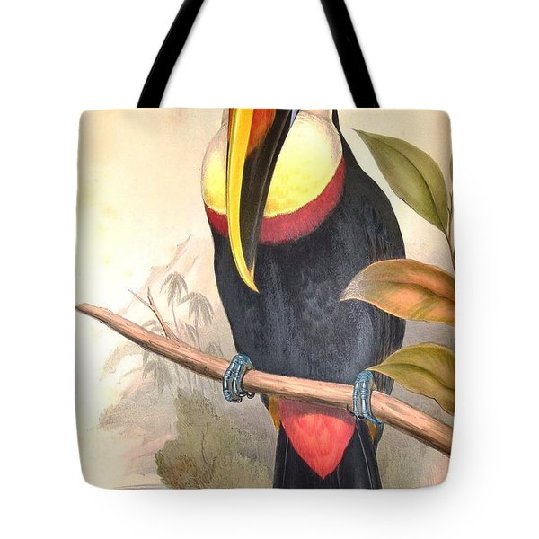 John Gould's Monograph Of The Ramphastidae Tote Bag