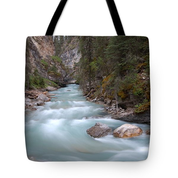Tote Bag featuring the photograph Johnston Canyon In Banff National Park by RicardMN Photography