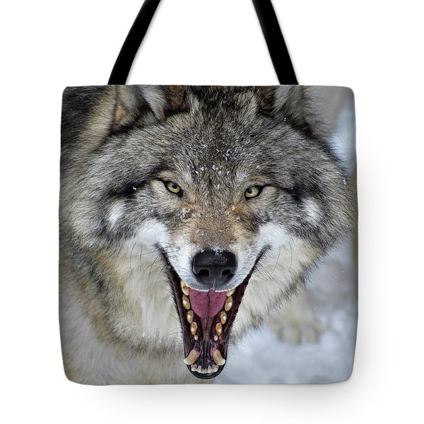 Tote Bag featuring the photograph Joker by Tony Beck