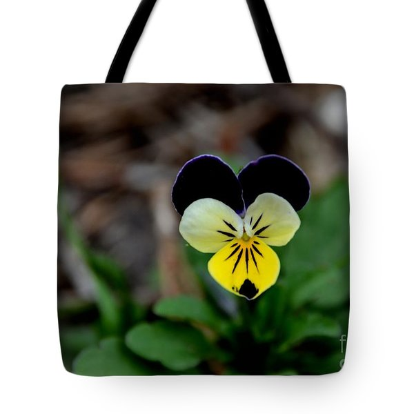Jonny Jump Up - Relative To A Pansy Tote Bag
