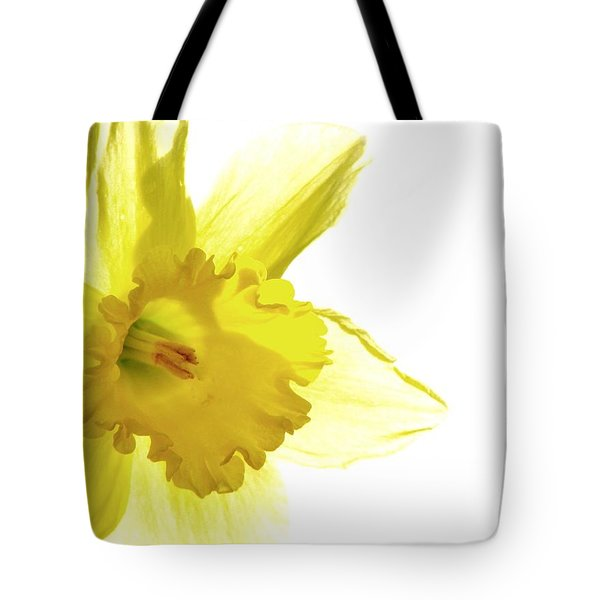 Jonquil Light Tote Bag by Angela Davies