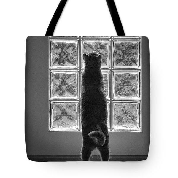 Joseph At The Window Tote Bag