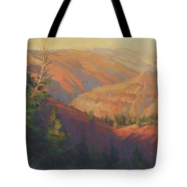 Joseph Canyon Tote Bag