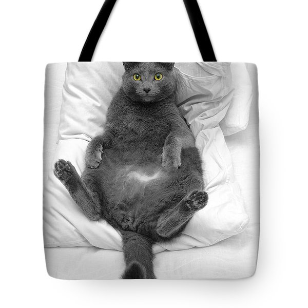 Joseph On A Pillow Tote Bag