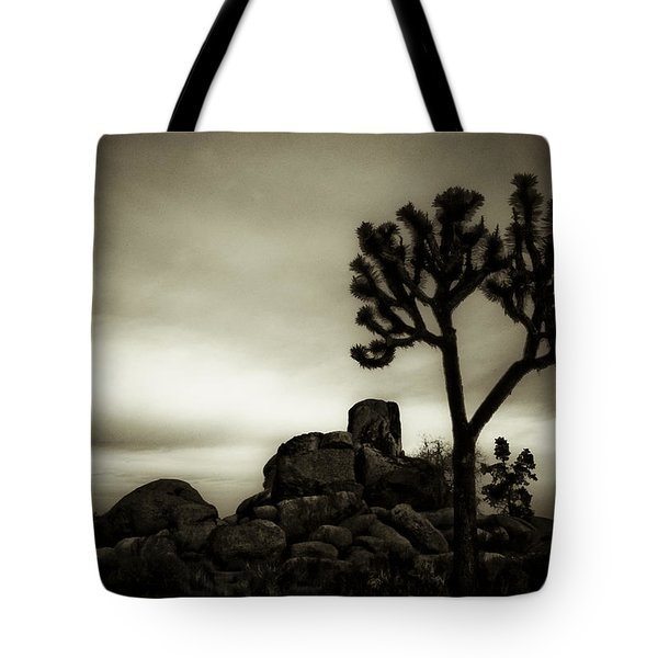 Tote Bag featuring the photograph Joshua Morning by Tom Vaughan