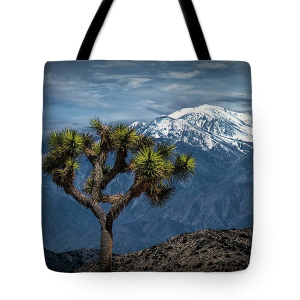Tote Bag featuring the photograph Joshua Tree At Keys View In Joshua Park National Park by Randall Nyhof