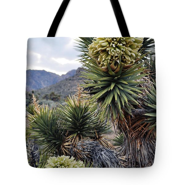 Tote Bag featuring the photograph Joshua Tree Bloom Rainbow Mountain by Kyle Hanson