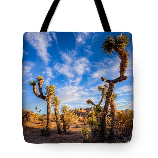 Tote Bag featuring the photograph Joshua Tree Dawn by Rikk Flohr