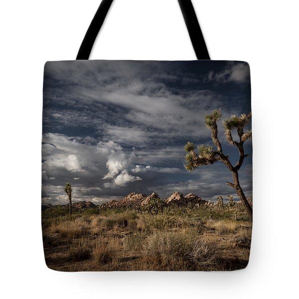 Joshua Tree Fantasy Tote Bag