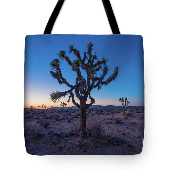 Joshua Tree Glow Tote Bag by Robert Loe